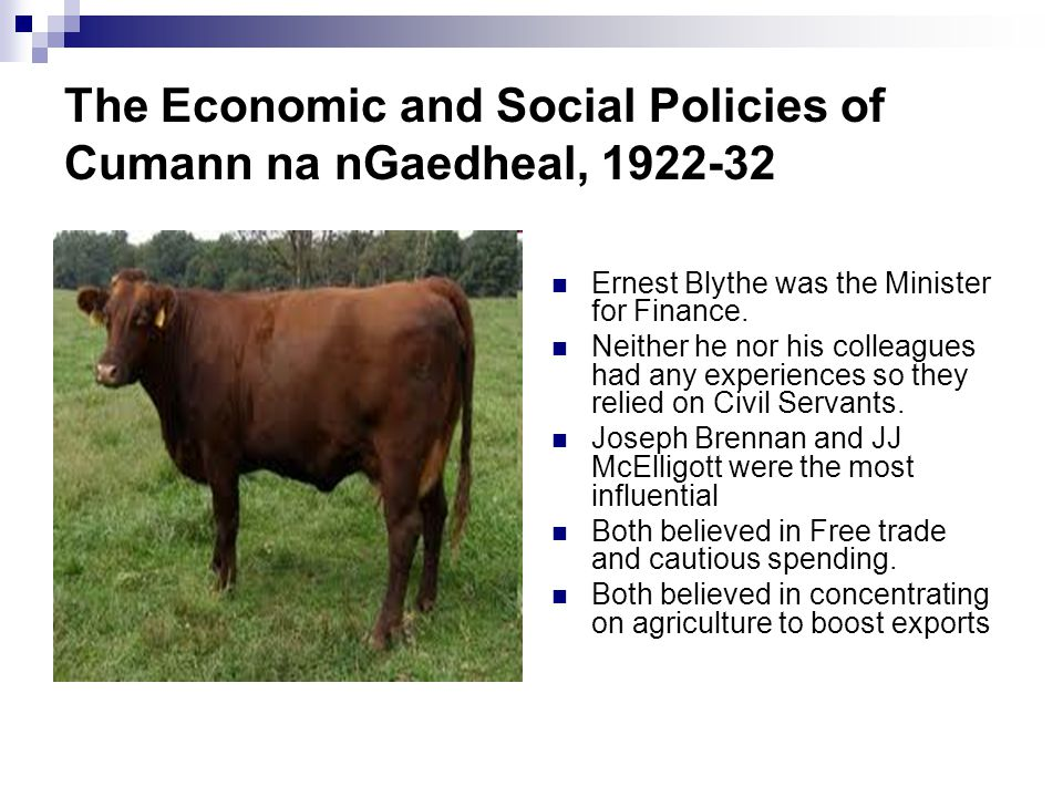 The Economic and Social Policies of Cumann na nGaedheal, 1922-32 Ernest Blythe was the Minister for Finance.