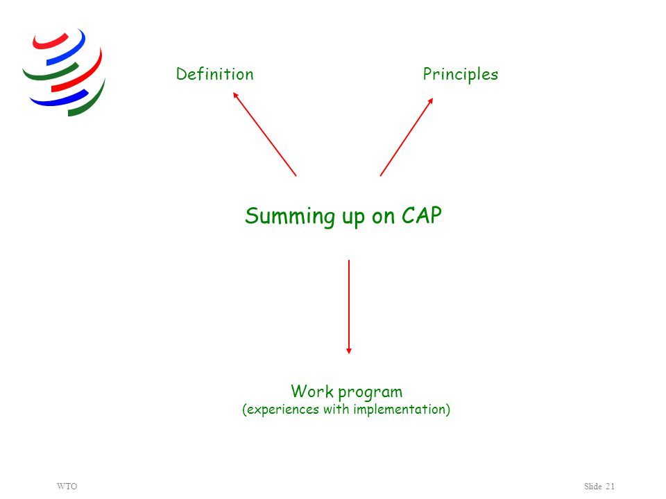 WTOSlide 21 Summing up on CAP DefinitionPrinciples Work program (experiences with implementation)