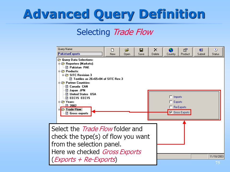 75 Advanced Query Definition Selecting Trade Flow Select the Trade Flow folder and check the type(s) of flow you want from the selection panel. Here w