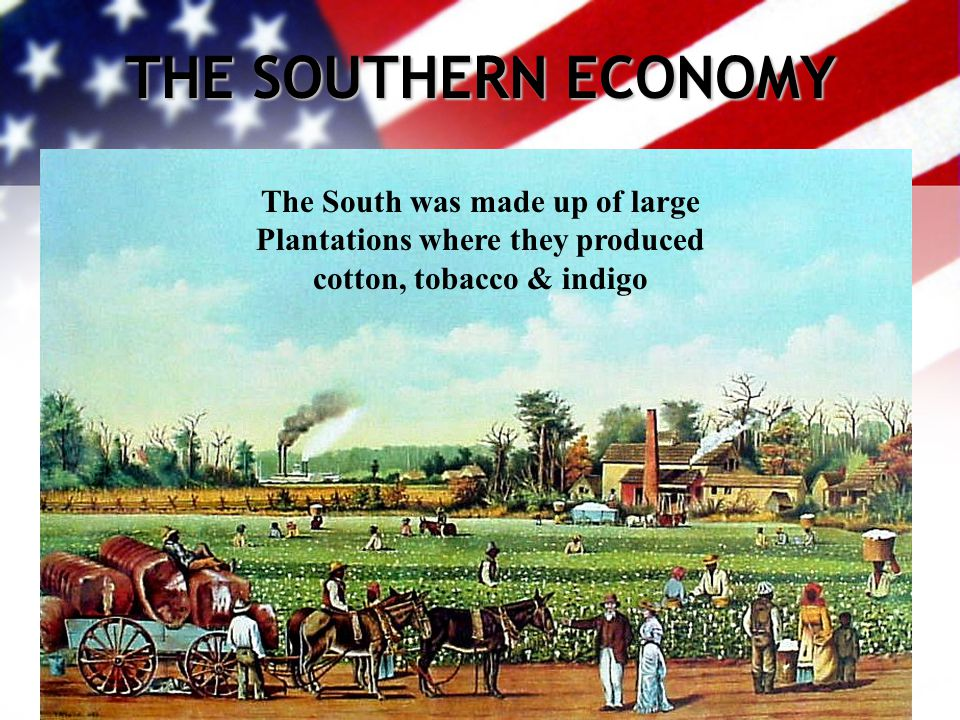 THE SOUTHERN ECONOMY The South was made up of large Plantations where they produced cotton, tobacco & indigo