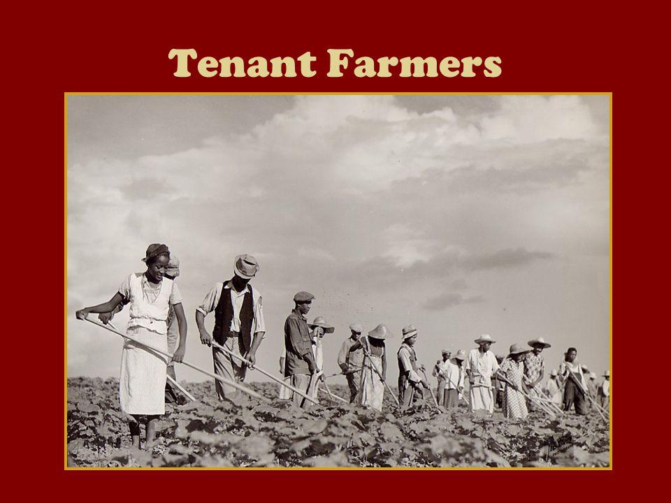 The Farmers Complaints National panics: 1873 & 1893 Railroads failed.