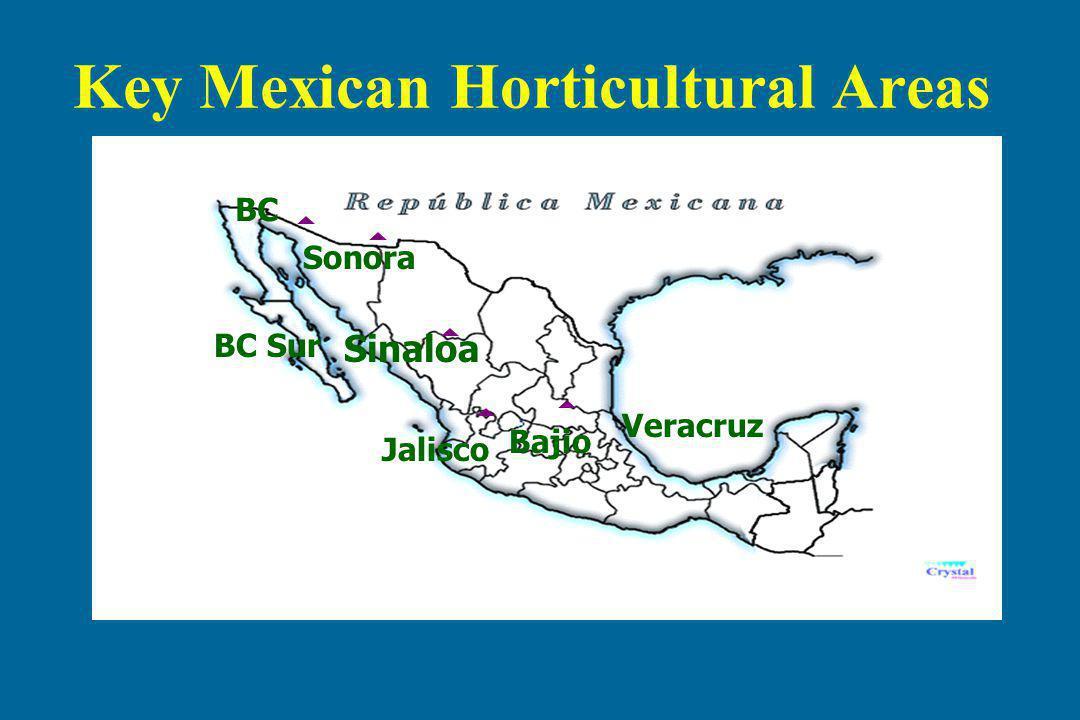 Sinaloa Sonora BC Jalisco Bajio Key Mexican Horticultural Areas BC Sur Veracruz