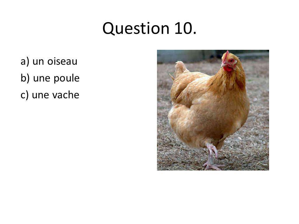 Question 10. a) un oiseau b) une poule c) une vache