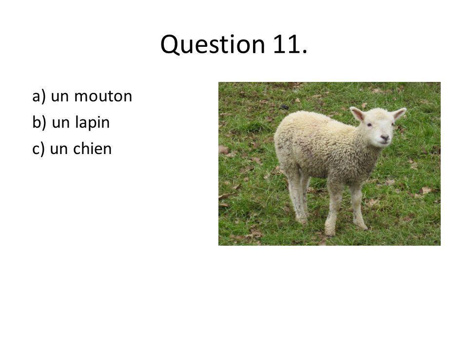 Question 11. a) un mouton b) un lapin c) un chien