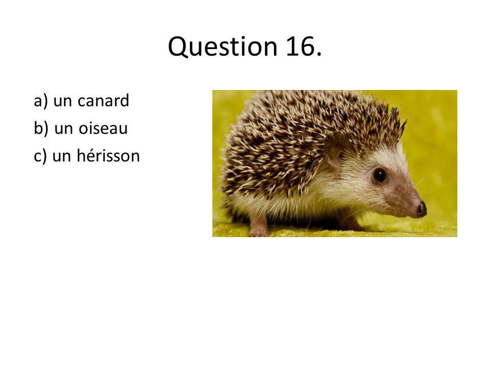 Question 16. a) un canard b) un oiseau c) un hérisson