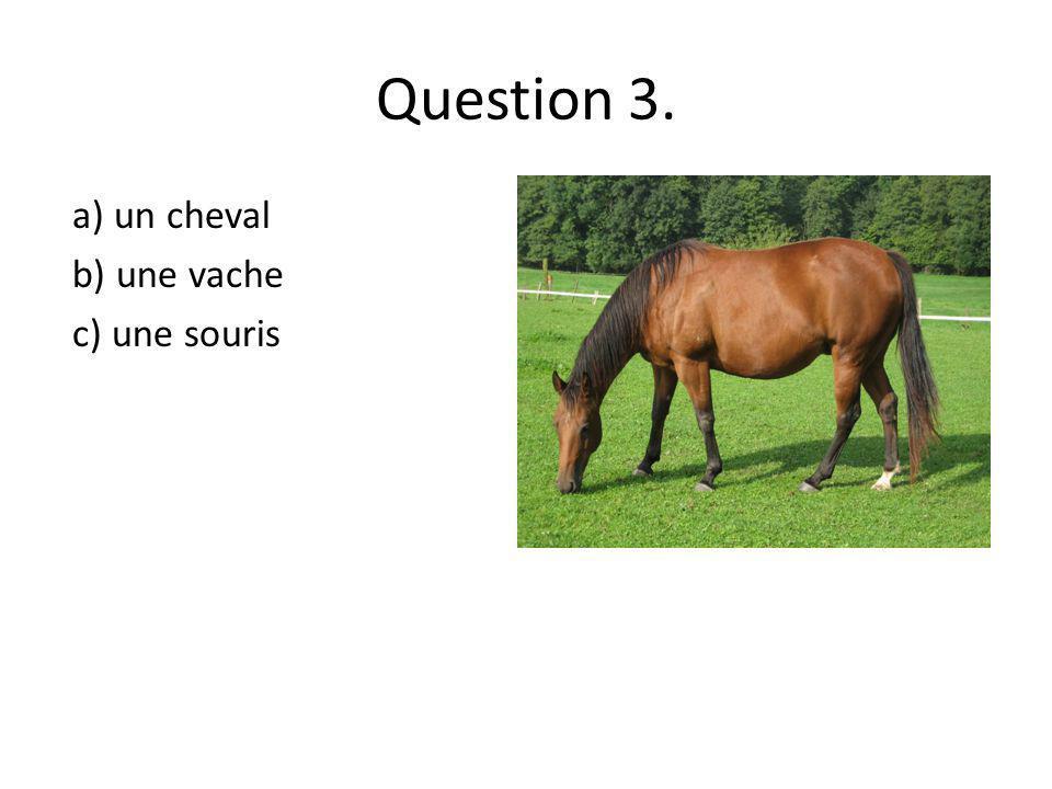 Question 3. a) un cheval b) une vache c) une souris