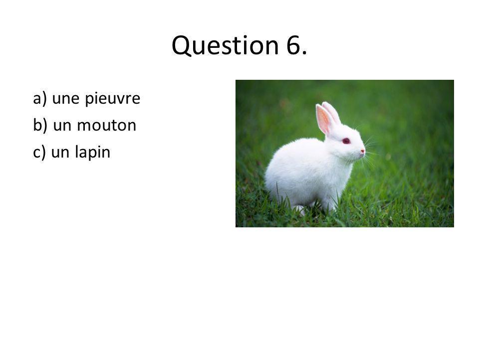 Question 6. a) une pieuvre b) un mouton c) un lapin