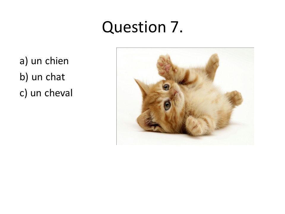 Question 7. a) un chien b) un chat c) un cheval