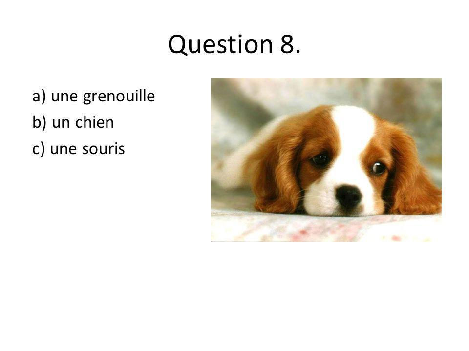 Question 8. a) une grenouille b) un chien c) une souris