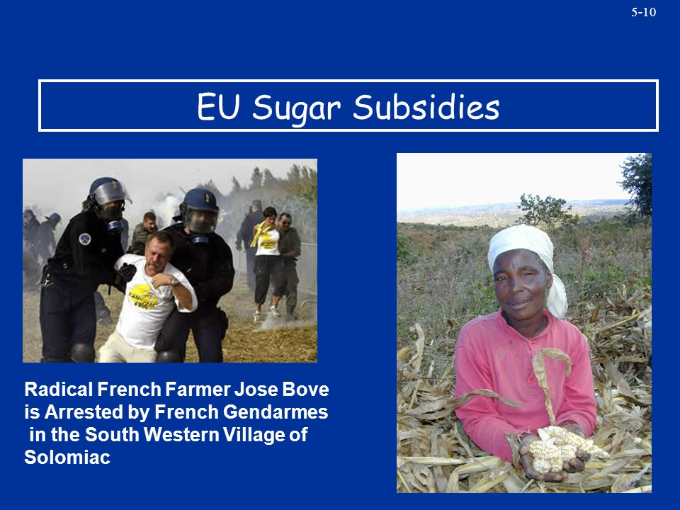 5-10 EU Sugar Subsidies Radical French Farmer Jose Bove is Arrested by French Gendarmes in the South Western Village of Solomiac