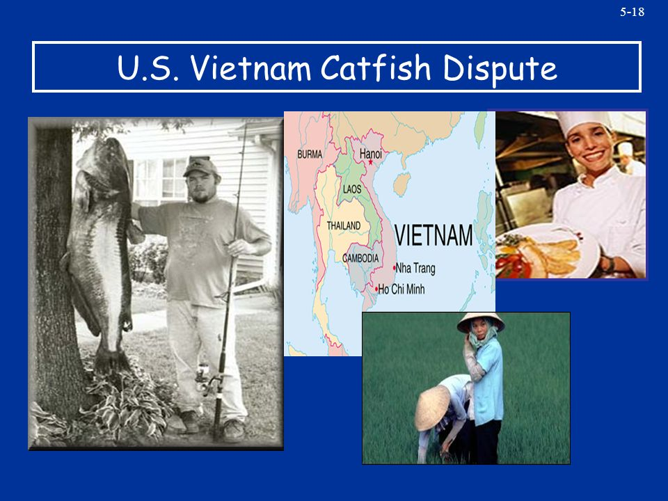 5-18 U.S. Vietnam Catfish Dispute