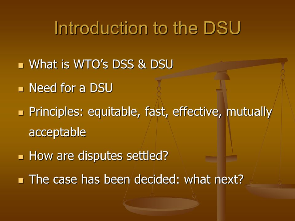 Introduction to the DSU What is WTOs DSS & DSU What is WTOs DSS & DSU Need for a DSU Need for a DSU Principles: equitable, fast, effective, mutually a