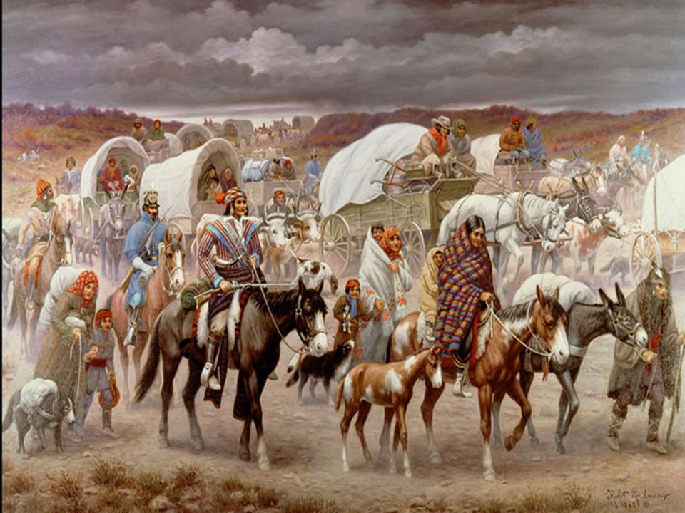 Division in the Cherokee Nation Cherokee went from being a peaceful nation to a group of people who were divided.