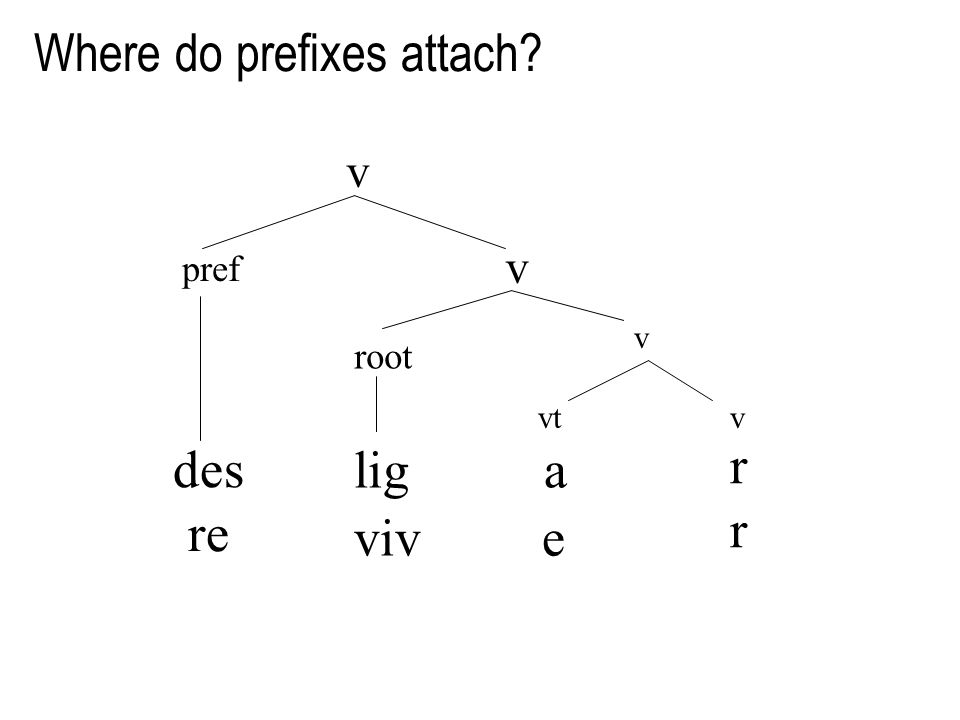 v pref des re Where do prefixes attach v root lig a viv e vtv rrrr v