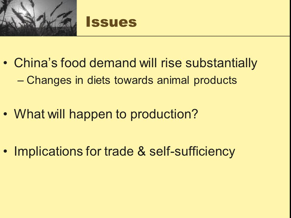 Issues Chinas food demand will rise substantially –Changes in diets towards animal products What will happen to production.