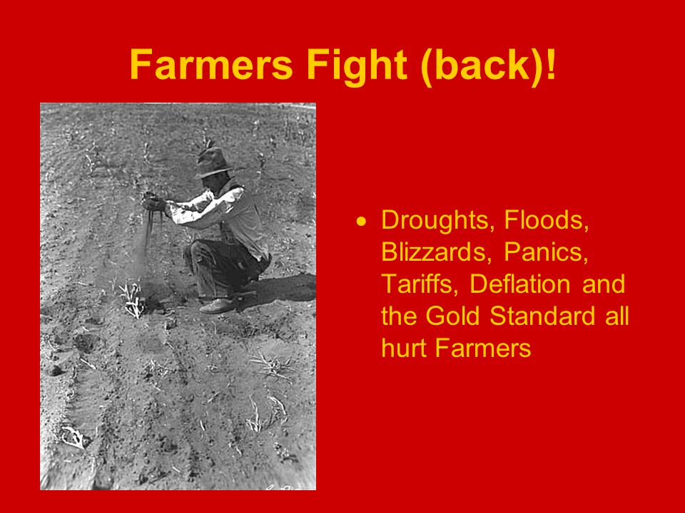 Farmers Fight (back).