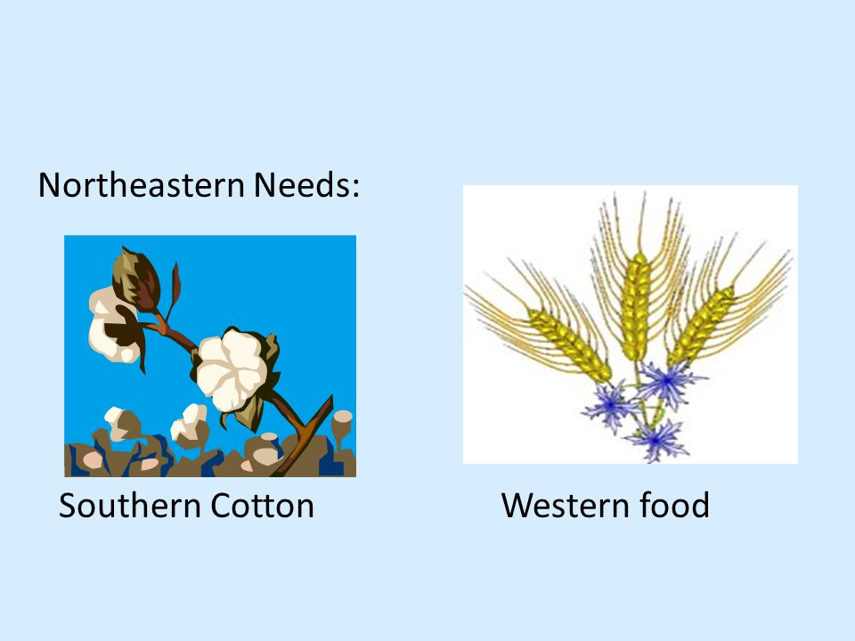 Northeastern Needs: Southern CottonWestern food