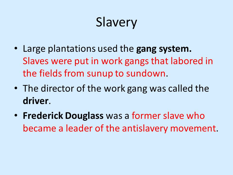 Slavery Large plantations used the gang system.