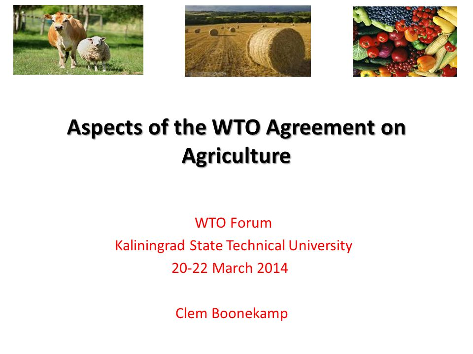 WTO Forum Kaliningrad State Technical University March 2014 Clem Boonekamp Aspects of the WTO Agreement on Agriculture