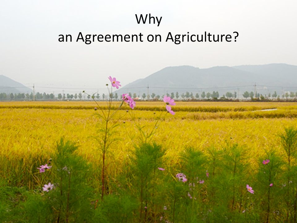 Why an Agreement on Agriculture 2