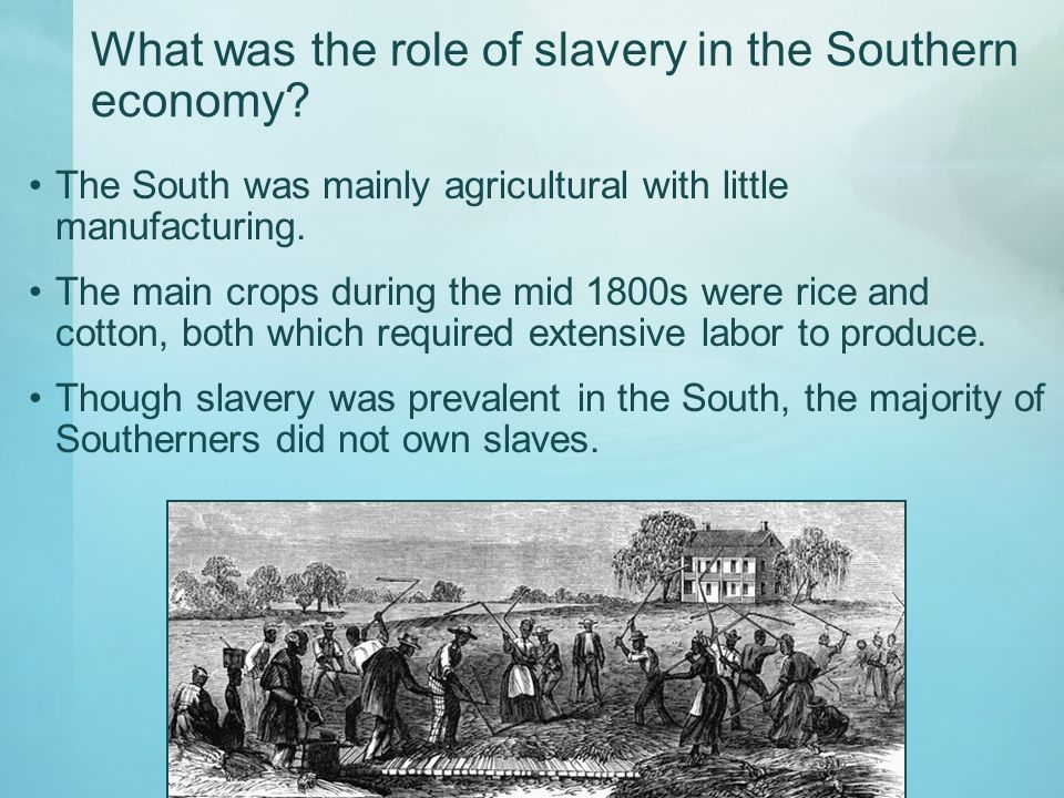 What was the role of slavery in the Southern economy? The South was mainly agricultural with little manufacturing. The main crops during the mid 1800s