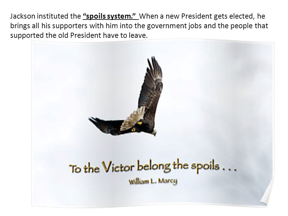 Jackson instituted the spoils system. When a new President gets elected, he brings all his supporters with him into the government jobs and the people