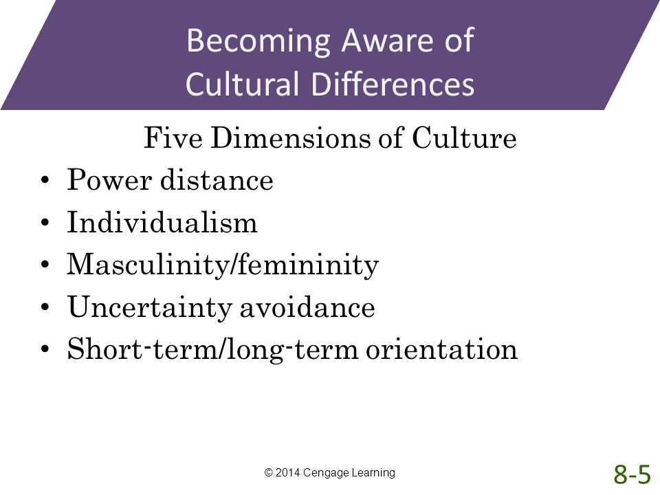 Becoming Aware of Cultural Differences Five Dimensions of Culture Power distance Individualism Masculinity/femininity Uncertainty avoidance Short-term
