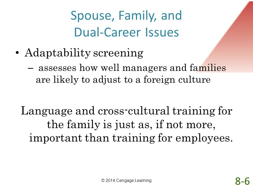 Spouse, Family, and Dual-Career Issues Adaptability screening – assesses how well managers and families are likely to adjust to a foreign culture Lang