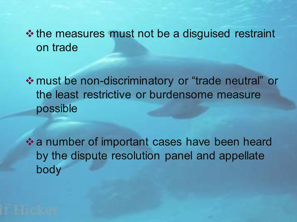 the measures must not be a disguised restraint on trade must be non-discriminatory or trade neutral or the least restrictive or burdensome measure possible a number of important cases have been heard by the dispute resolution panel and appellate body