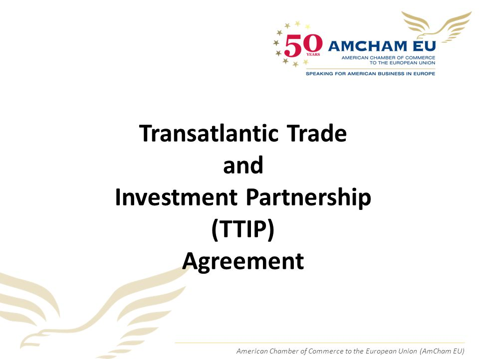 American Chamber of Commerce to the European Union (AmCham EU) Transatlantic Trade and Investment Partnership (TTIP) Agreement
