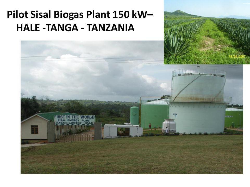 Pilot Sisal Biogas Plant 150 kW– HALE -TANGA - TANZANIA