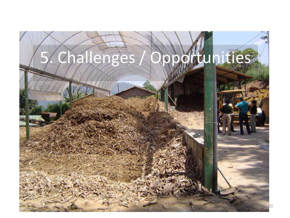 5. Challenges / Opportunities 50