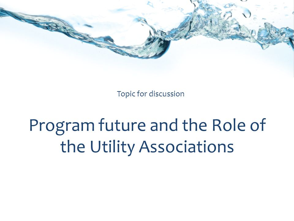 Program future and the Role of the Utility Associations Topic for discussion
