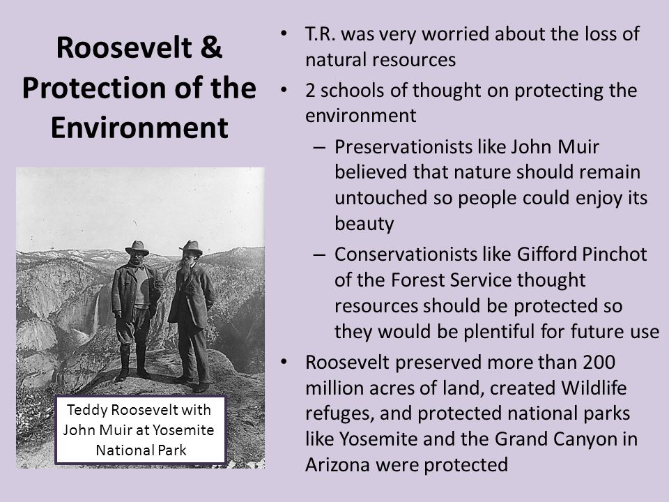 Roosevelt & Protection of the Environment T.R. was very worried about the loss of natural resources 2 schools of thought on protecting the environment