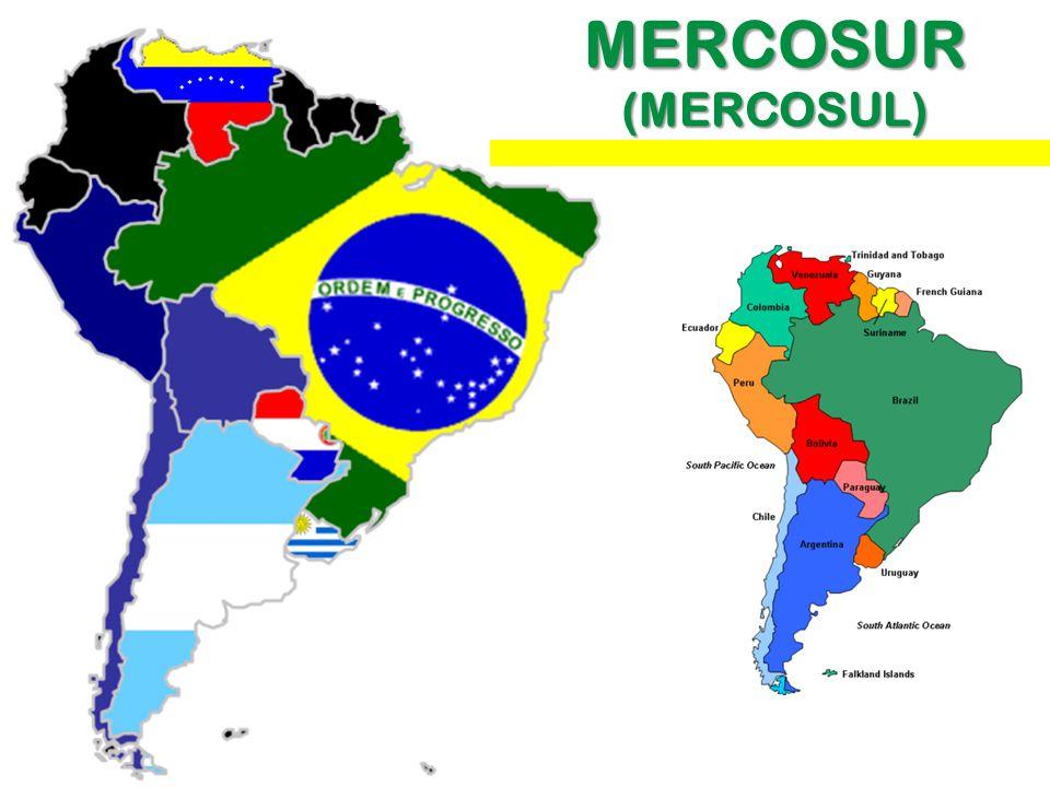 MERCOSUR (MERCOSUL)