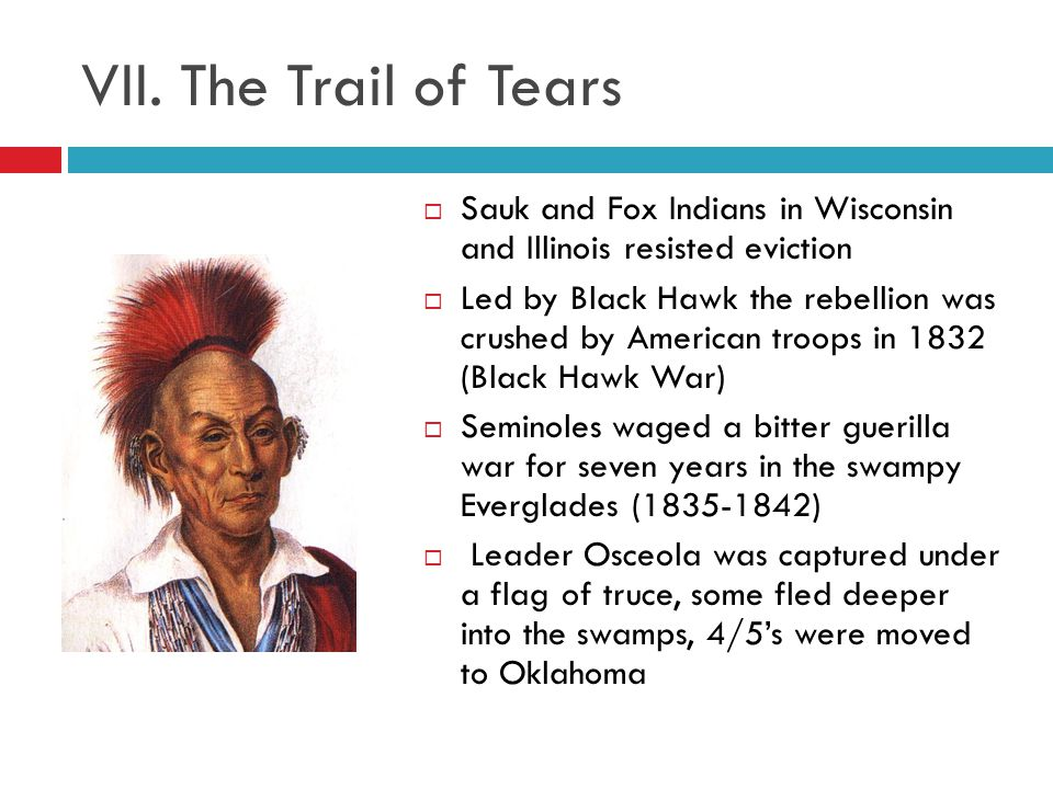 VIII.The Bank War Jackson distrusted big business and the Bank of the US Why.