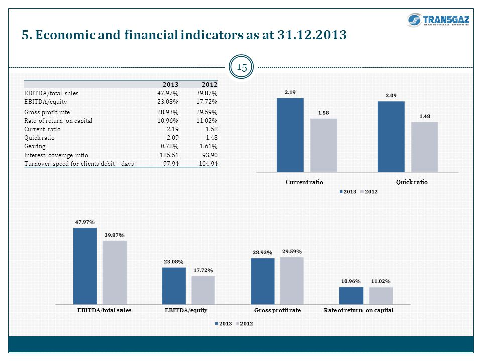5. Economic and financial indicators as at 31.12.2013 15 20132012 EBITDA/total sales47.97%39.87% EBITDA/equity23.08%17.72% Gross profit rate28.93%29.5