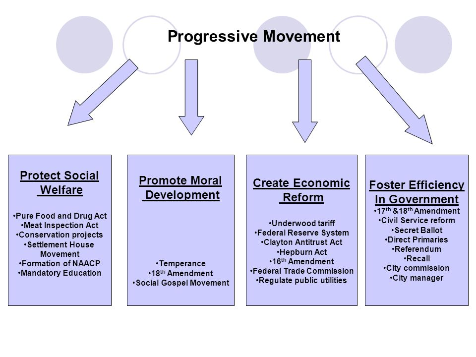 Progressive Movement Protect Social Welfare Pure Food and Drug Act Meat Inspection Act Conservation projects Settlement House Movement Formation of NA