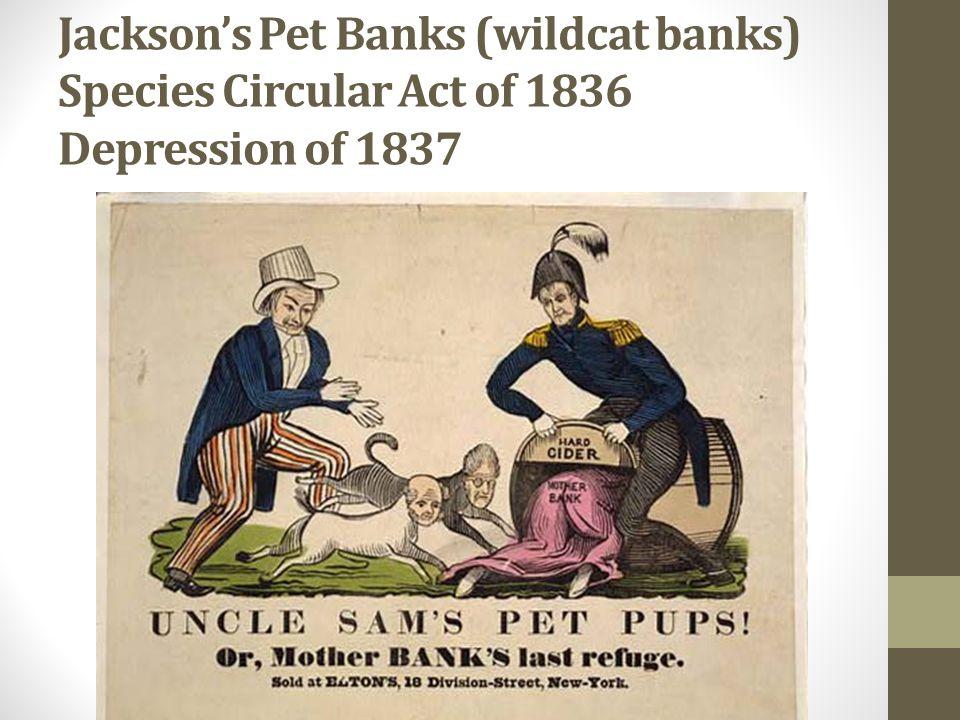 Jacksons Pet Banks (wildcat banks) Species Circular Act of 1836 Depression of 1837