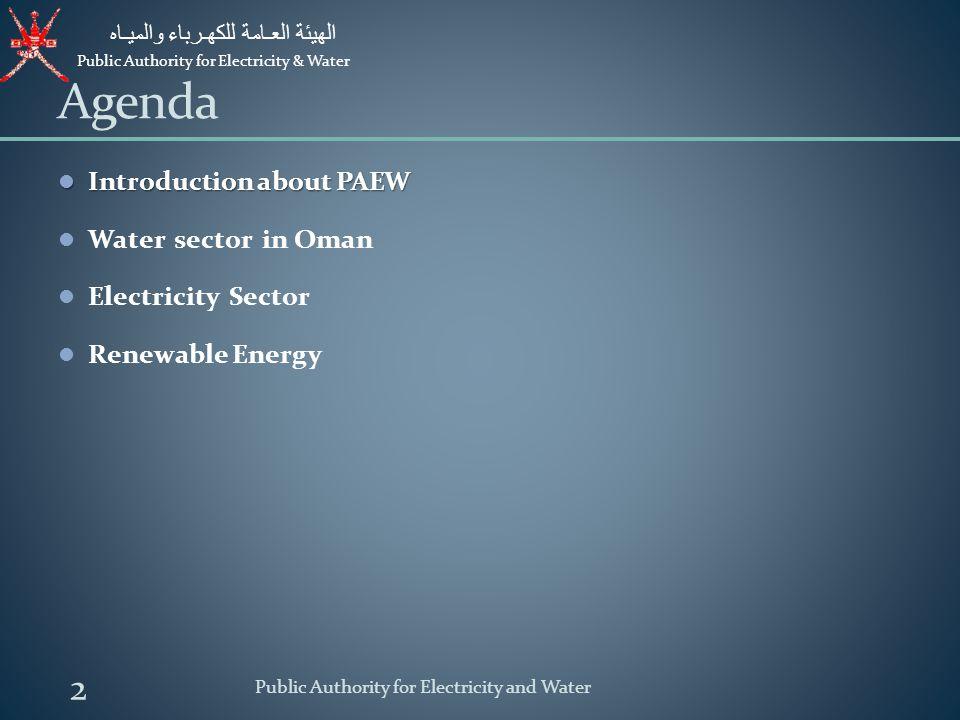Public Authority for Electricity & Water الهيئة العـامة للكهـرباء والميـاه 13 Public Authority for Electricity and Water Consumption Breakdown - MIS