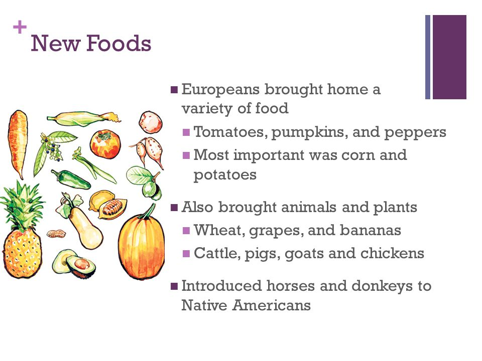 + New Foods Europeans brought home a variety of food Tomatoes, pumpkins, and peppers Most important was corn and potatoes Also brought animals and plants Wheat, grapes, and bananas Cattle, pigs, goats and chickens Introduced horses and donkeys to Native Americans