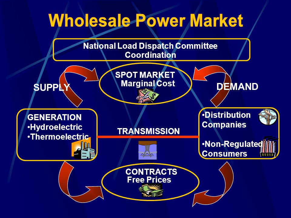 SPOT MARKET GENERATION CONTRACTS TRANSMISSION SUPPLY DEMAND Marginal Cost Hydroelectric Thermoelectric Free Prices Distribution Companies Non-Regulate