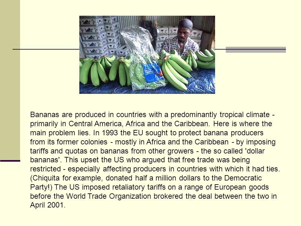 Bananas are produced in countries with a predominantly tropical climate - primarily in Central America, Africa and the Caribbean.