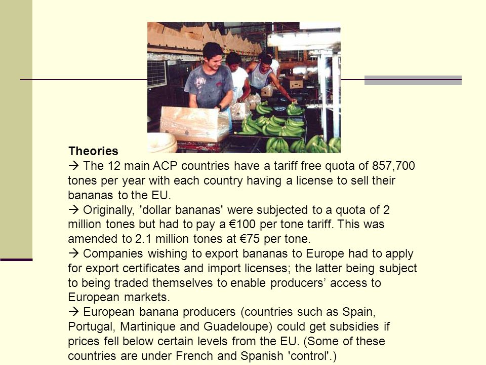 Theories The 12 main ACP countries have a tariff free quota of 857,700 tones per year with each country having a license to sell their bananas to the EU.