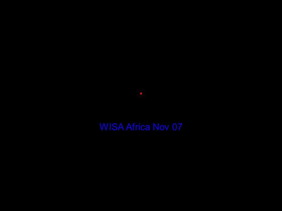 . WISA Africa Nov 07