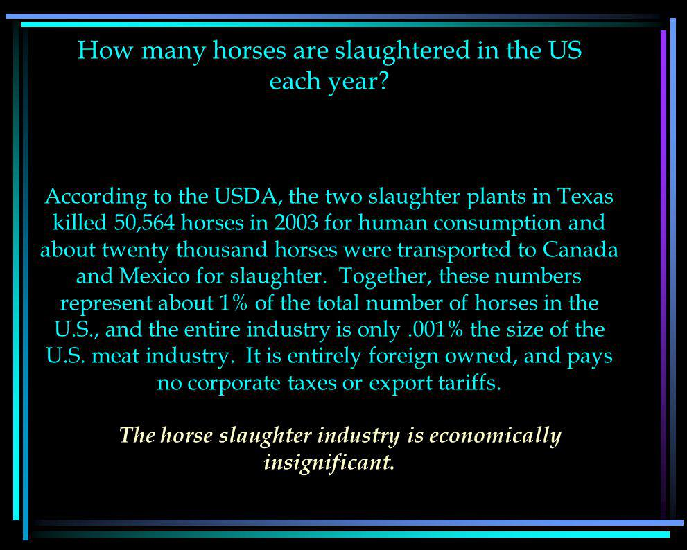 How many horses are slaughtered in the US each year.