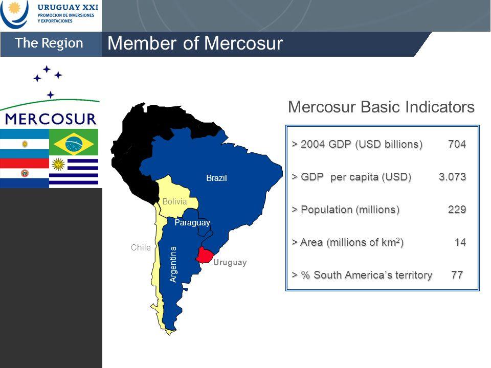 The Region Member of Mercosur > 2004 GDP (USD billions) 704 > GDP per capita (USD)3.073 > Population (millions) 229 > Area (millions of km 2 ) 14 > % South Americas territory 77 Mercosur Basic Indicators Brazil Paraguay Bolivia Chile Uruguay Argentina