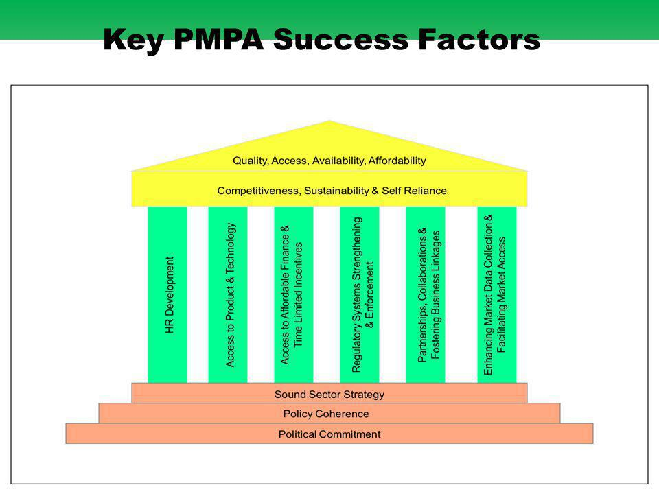 20 Key PMPA Success Factors