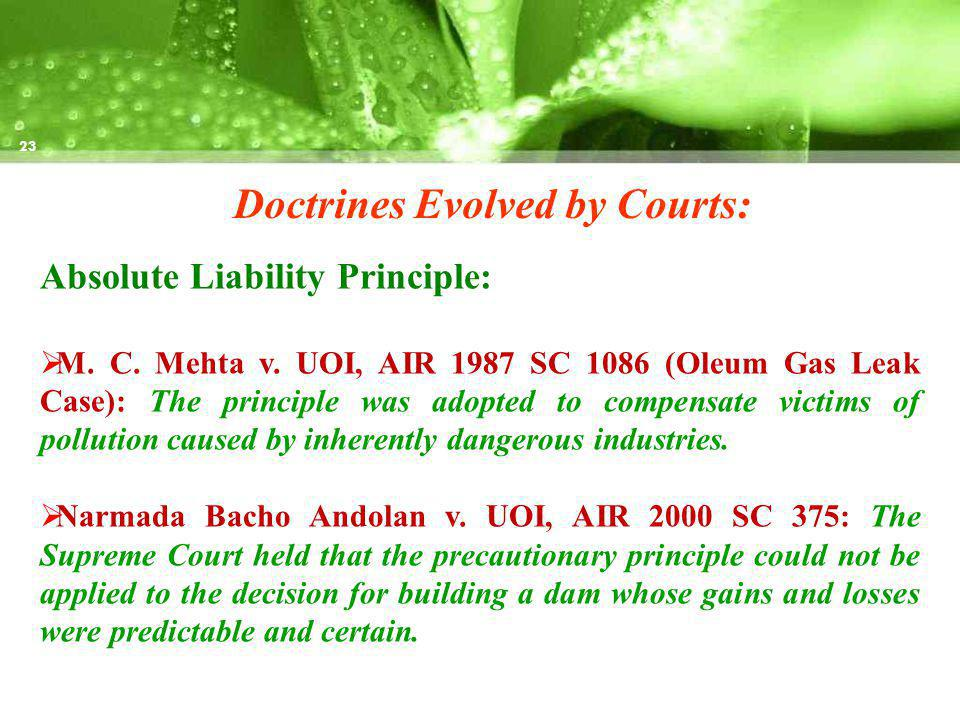 Doctrines Evolved by Courts: Absolute Liability Principle: M.