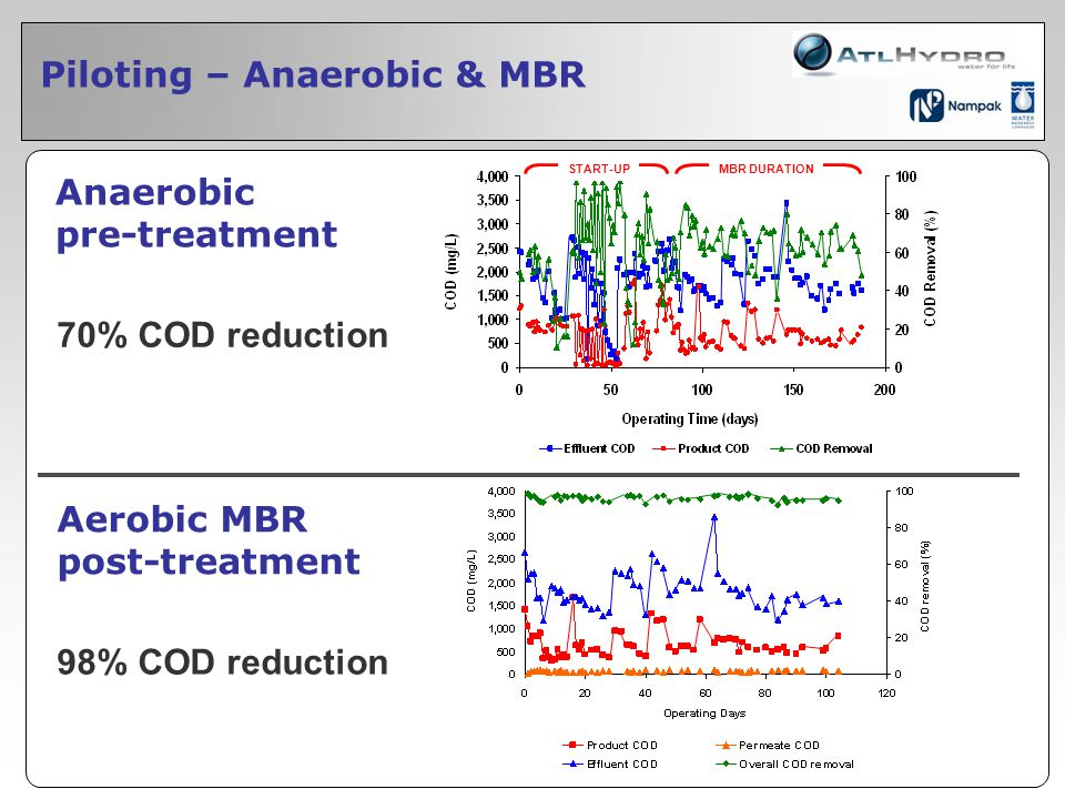 Piloting – Anaerobic & MBR Anaerobic pre-treatment Aerobic MBR post-treatment 70% COD reduction START-UP 98% COD reduction MBR DURATION